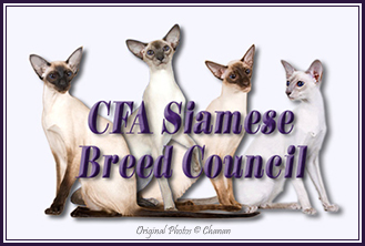 Siamese Breed Council